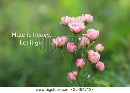 Inspirational Quote - Hate Is Heavy. Let It Go. With Beautiful Pink Roses Flower Blossom In Garden O