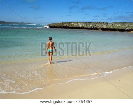 The Perfect Beach Babe