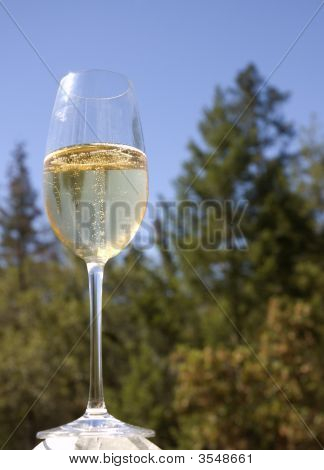 Sparkling Wine In A Glass Bathed In Sunshine And Poised To Drink