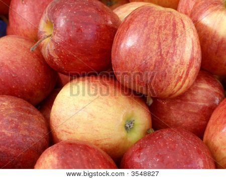 Fruit - Apples
