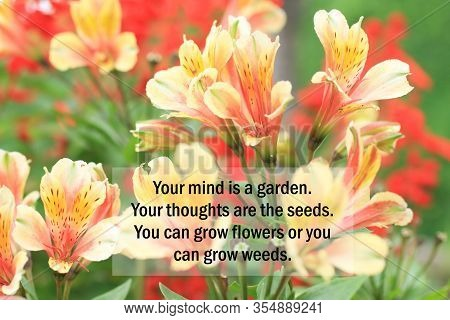 Inspirational Quote - Your Mind Is A Garden. Your Thoughts Are The Seeds. You Can Grow Flowers Or Yo