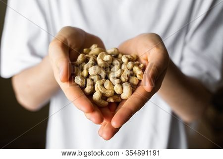Cashew Nuts In A Womans Hands. Cashew Nut Is A Healthy Vegetarian Protein And Nutritious Food. Nuts