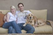 attractive young couple and their Golden Retriever dog sitting on sofa poster