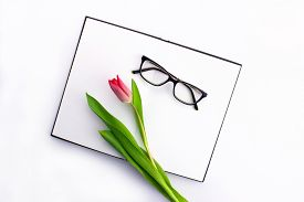 Colorful Red Tulip With Sketchbook, Notebook And Eyeglasses Flat Lay Isolated On White Background To