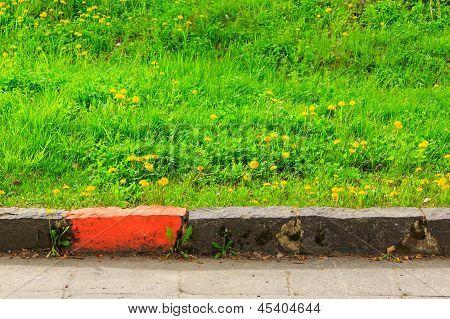 Border Marking Infront Of Green Grass