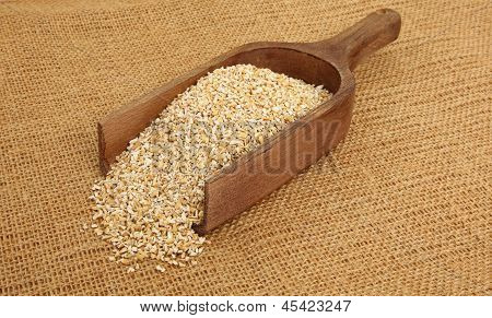 Steel Cut Oatmeal In Scoop