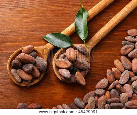 Cocoa beans with leaves in spoons on wooden background