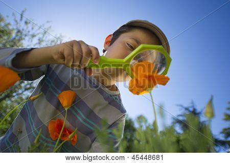 Child observing nature with a magnifying glass in a garden poster