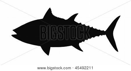 Vector silhouette of tuna.