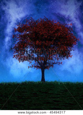 Tree By Night