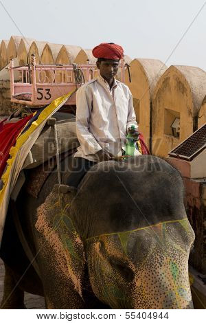 Elephant And Mahout At Amber Fort