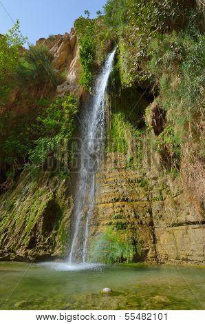 David Wasserfall