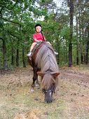 My Pony poster