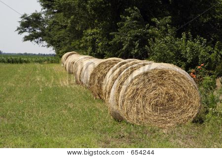 Round Bales In A Row