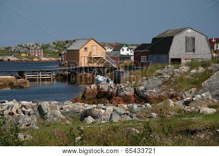 Old-tyme Newfoundland
