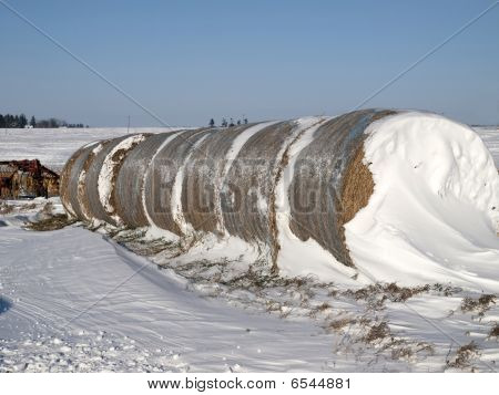 Bales of hay in Iowa