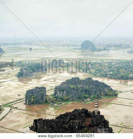 Amazing Panorama View Of The Rice Fields. Ninh Binh, Vietnam