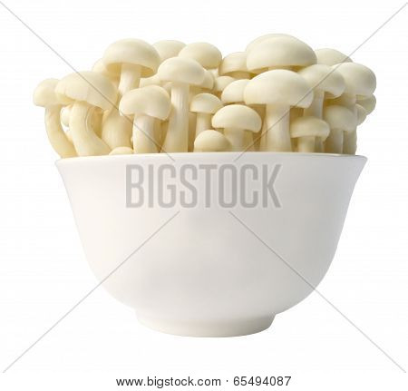 Enoki, oyster mushrooms in a bowl.