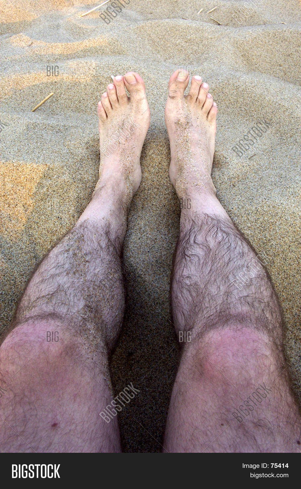 pictures-of-hairy-legs