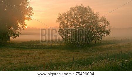 Misty Morning at the Schelde in Belgium poster