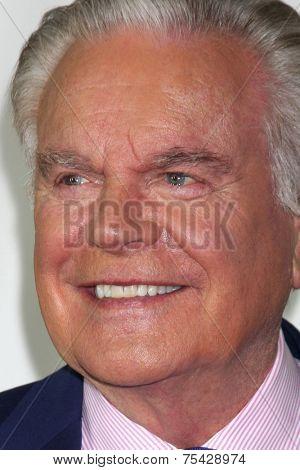 LOS ANGELES - NOV 4:  Robert Wagner at the Hallmark Channel's