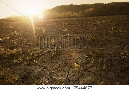 Cracked, Parched Land After A Long Dry Season