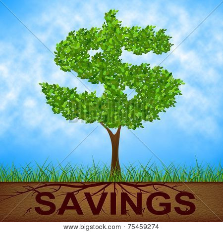 Savings Tree Shows United States And Banking