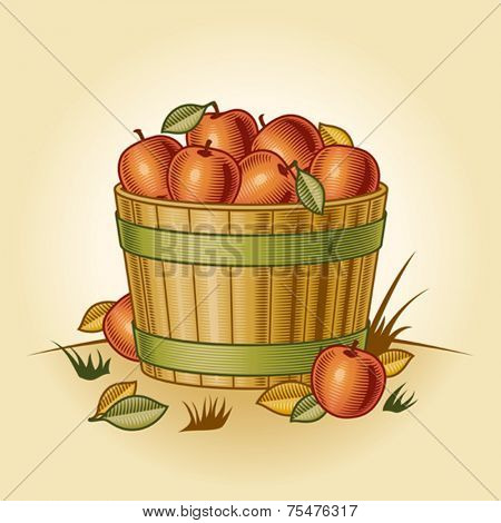 Retro bushel of apples. Vector