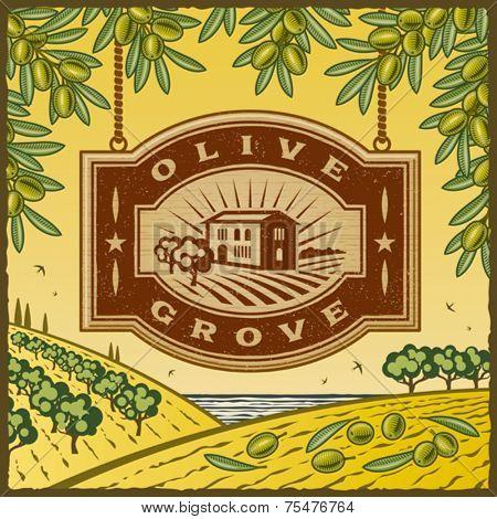 Retro Olive Grove. Vector