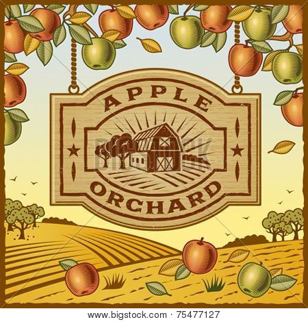 Apple Orchard. Fully editable vector.