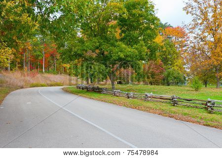 Road In Autumn Park.