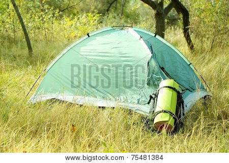 Touristic tent on dried grass in a forest