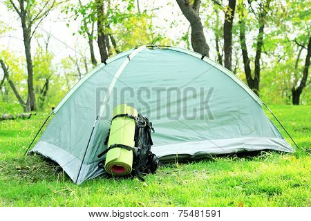 Touristic tent on green grass in a forest