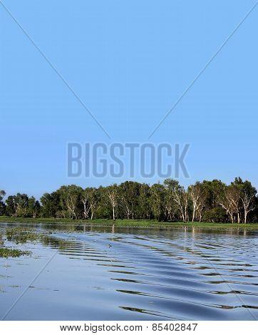 Australian Billabong Background