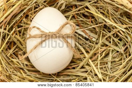 country style easter egg in hay with bowknot
