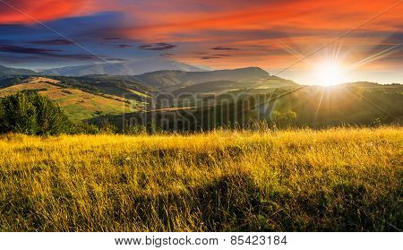 Meadow With Tall Grass In Mountains At Sunset