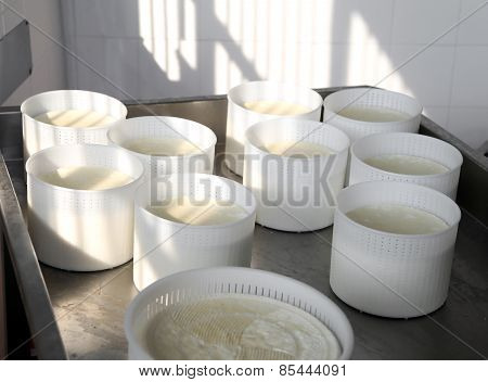 Cheese Just Produced In Mountain Dairy
