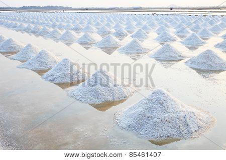 Heap Of Sea Salt In Original Salt Produce Farm Make From Natural Ocean Salty Water Preparing For Las