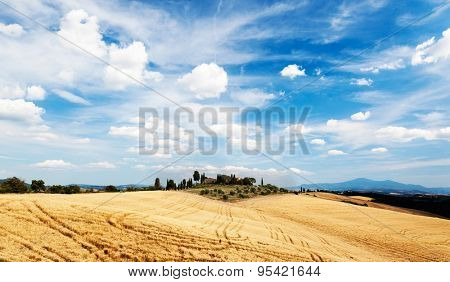 Tuscan countryside in a summer sunny day. Rural houses on the top of a hill rounded by golden grain fields. Blue sky with white clouds. Valle d'Orcia, Tuscany, Italy, Europe.