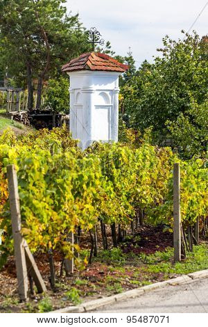 God's torture with autumnal vineyard, Pritluky, Czech Republic