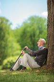 Vertical shot of a senior gentleman sitting in park by a tree and holding a cane on a beautiful summer day poster