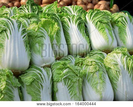 Fresh lettuce in sunshine at market of Birmingham, United Kingdom