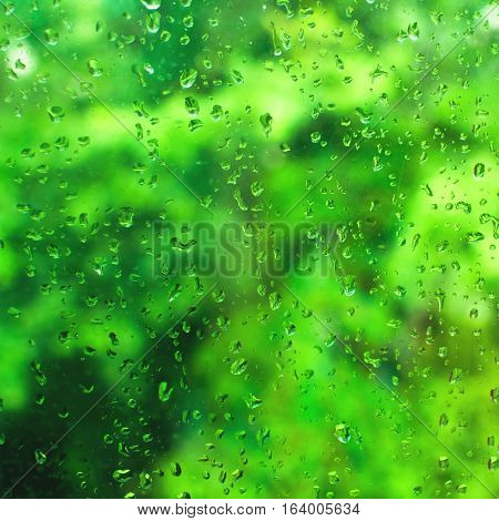 Abstract background with rain drops on window glass and green unfocused background. Square