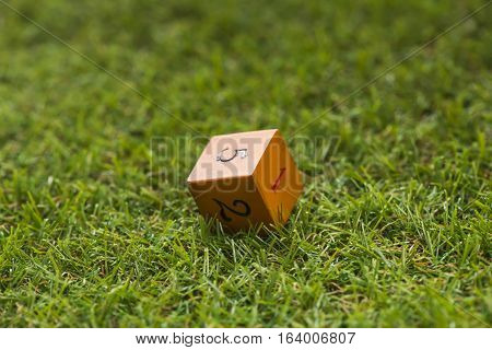 Dice cube on grass background, Macro, Sensitive focus, This dice by handmade