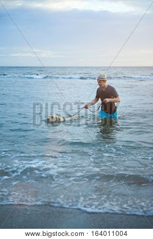 Man with labrador dog in beach ocean water. Man walking in sea water with labrador dog