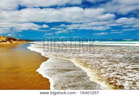Famous Ninety Mile Beach, New Zealand