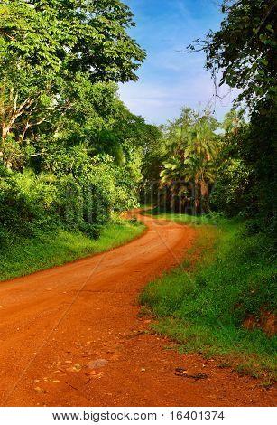 Landscape with rainforest and road, Uganda