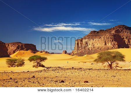 Desert landscape with dunes and rocks, Sahara Desert, Tadrart, Algeria