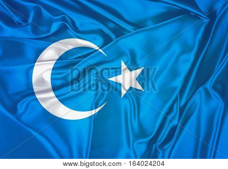East Turkestan, East Turkestan Flag Design and Presentation