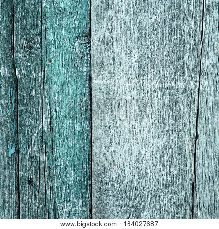 wood planks textue background. closeup of old cracked wood planks.